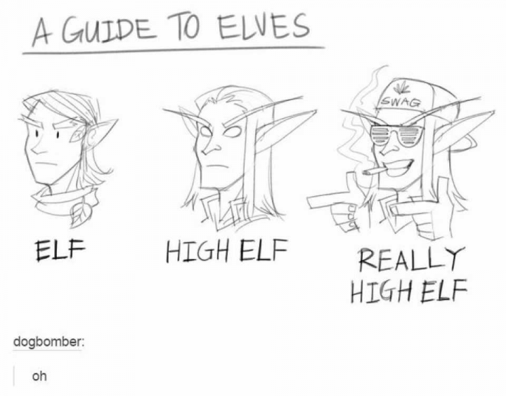 A Guide to Elves