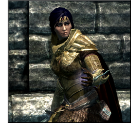 Tamriel Vault - Character Build: The Mage Knight