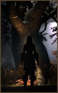 Tamriel Vault - Character Build: The Animist