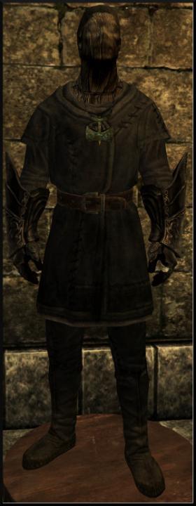 Tamriel Vault Character Build Rajhin Thief God